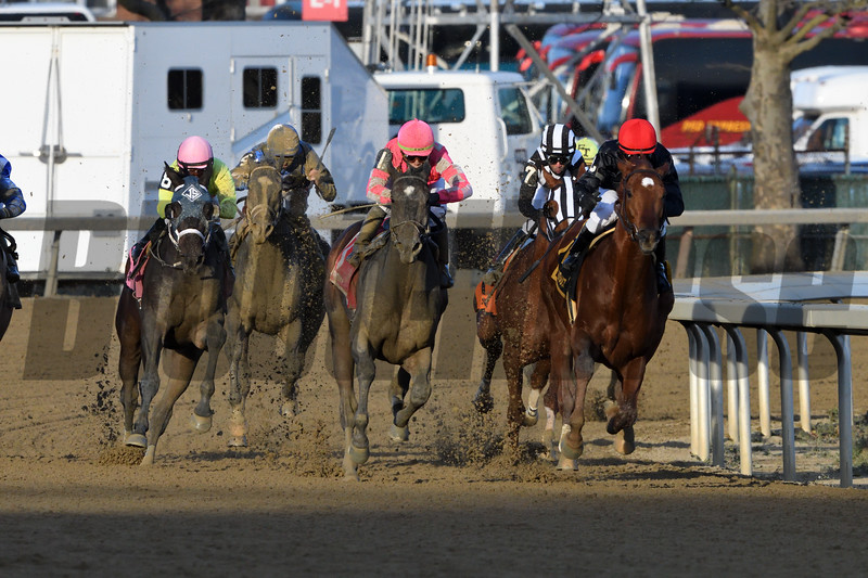 Performer wins the 2019 Discovery at Aqueduct<br /> Coglianese Photos/Elsa Lorieul