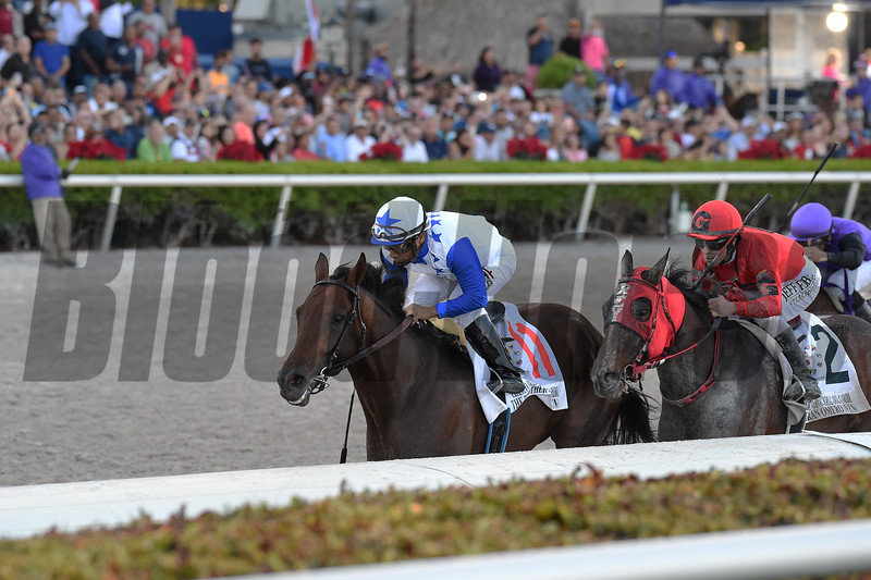 The Brother Slew wins the 2019 Clasico Internacional del Caribe Stakes at Gulfstream Park<br /> Coglianese Photos/Ryan Thompson