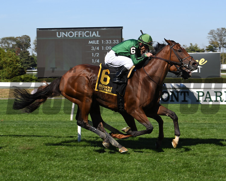 Gucci Factor wins the 2019 Mohawk Stakes at Belmont Park<br /> Coglianese Photos/Susie Raisher