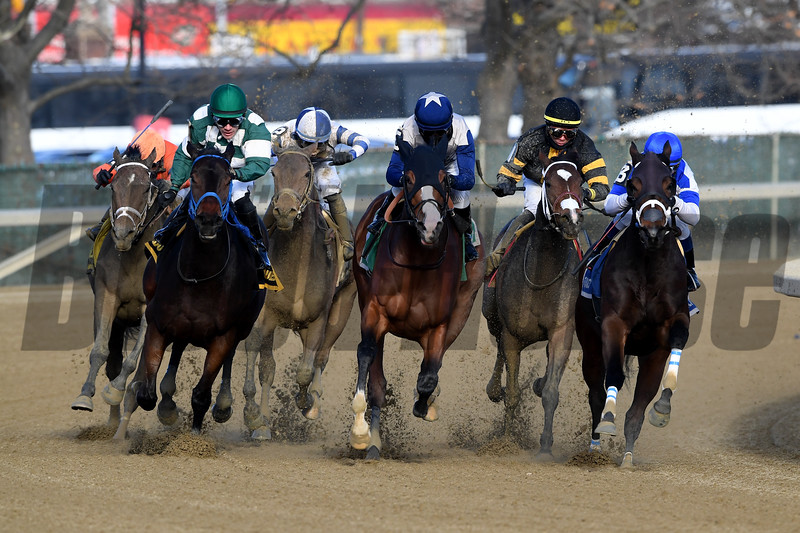 Spiced Perfection wins the 2019 Go for Wand Handicap at Aqueduct<br /> Coglianese Photos/Rob Mauhar