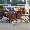 Seeking the Truth - Maiden Win, Gulfstream Park, September 20, 2019<br /> Coglianese Photos/Lauren King