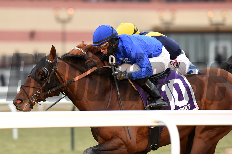 Pixelate wins the 2019 Central Park Stakes at Aqueduct<br /> Coglianese Photos/Elsa Lorieul