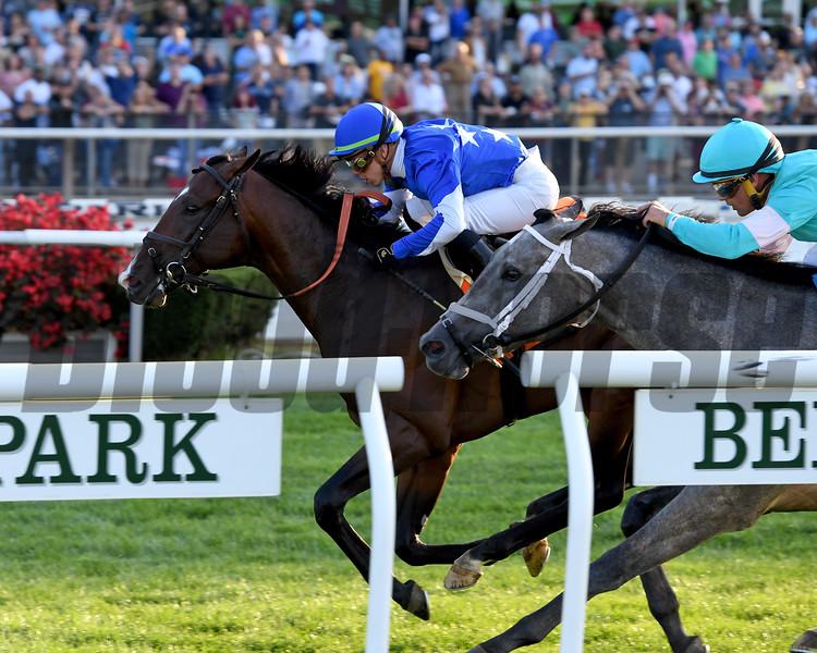 Structor wins the 2019 Pilgrim Stakes at Belmont Park<br /> Coglianese Photos/Joe Labozzetta