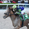War Story wins the 2019 Harlan's Holiday at Gulfstream Park<br /> Coglianese Photos/Ryan Thompson