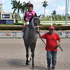 Extrordinary Jerry wins the 2019 FTBOA Florida Sire Wildcat Heir Stakes at Gulfstream Park<br /> Coglianese Photos/Lauren King