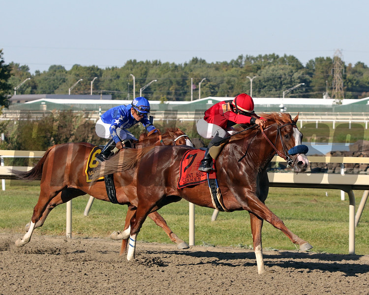 King Jack with Joel Rosario win the 28th Running of the Gallant Bob Stakes (GII) at Parx on September 21, 2019. Photo By: Chad B. Harmon