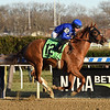 Lake Avenue wins the 2019 Demoiselle Stakes at Aqueduct<br /> Coglianese Photos/Elsa Lorieul