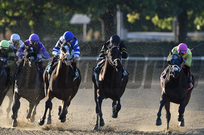 Pat On the Back wins the 2019 Kelso at Belmont Park<br /> Coglianese Photos/Elsa Lorieul