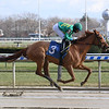 Royal Flag - MSW Win, Aqueduct - December 15, 2019<br /> Coglianese Photos