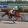 Liza Star wins the 2019 Claiming Crown Glass Slipper at Gulfstream Park<br /> Coglianese Photos/Andie Biancone