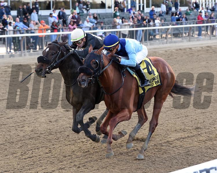 Captain Bombastic wins the 2019 Sleepy Hollow Stakes<br /> Coglianese Photos/Chelsea Durand