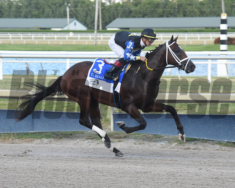 Chance It wins the 2019 FTBOA Florida Sire In Reality Stakes at Gulfstream Park<br /> Coglianese Photos/Lauren King