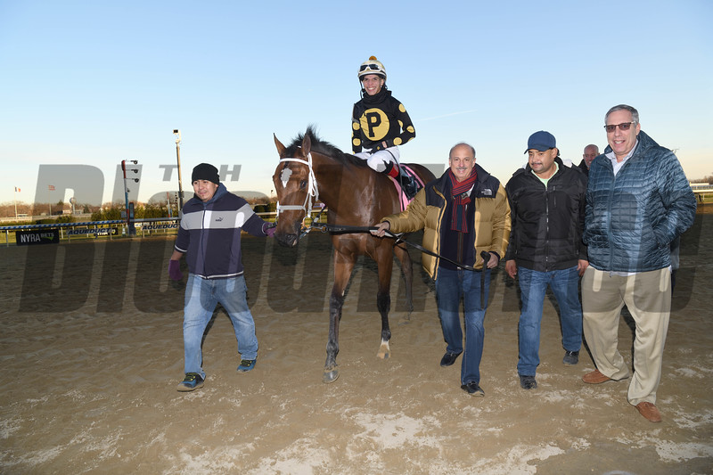 Temple wins the 2019 Gio Ponti Stakes at Aqueduct<br /> Coglianese Photos