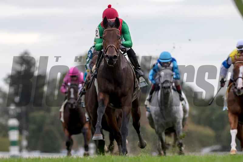 Oleksandra and Joel Rosairo win the G3 Buffalo Trace Franklin County Stakes_Neil Drysdale Trainer, Keenland Race Course, Lexington, KY, 10-11-19 MatheaKelley-racingfotos