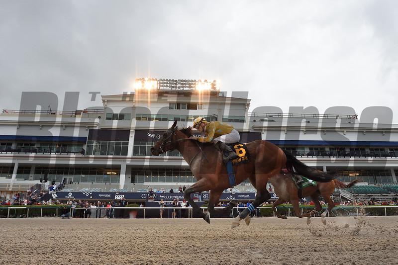 Diamond Oops wins 2019 Mr Prospector Stakes Saturday, December 21 at Gulfstream Park. Photo: Coglianese Photos/Ryan Thompson