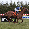 Sadler's Joy wins the 2019 Red Smith Stakes at Aqueduct<br /> Coglianese Photos/Susie Raisher