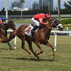 Madame Bourbon - Maiden Win, Gulfstream Park, September 15, 2019<br /> Coglianese Photos/Lauren King