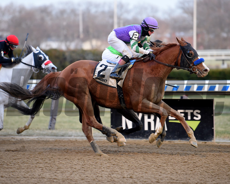 Stan the Man wins 2019 Queen's County Stakes at Aqueduct. Photo: Coglianese Photos