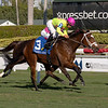 Shekky Shebaz wins the 2019 Claiming Crown Canterbury at Gulfstream Park<br /> Coglianese Photos/Andie Biancone