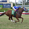 Speed Star - ALW, Gulfstream Park, September 15, 2019<br /> Coglianese Photos/Lauren King