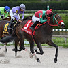 Wildwood's Beauty wins the 2019 Millions Distaff Stakes at Gulfstream Park West<br /> Coglianese Photos