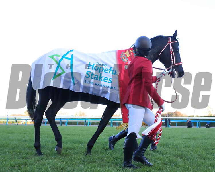 Contrail wins the 2019 Hopeful Stakes. Photo: Masakazu Takahashi
