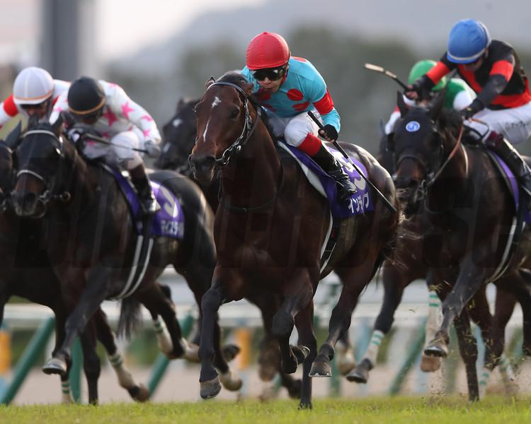 Indy Champ wins the 2019 Mile Championship at Kyoto Racecourse. Photo: Masakazu Takahashi