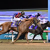 Vacation (outside) wins the 2019 Zen-Nippon Nisai Yushun<br /> Katsumi Saito Photo