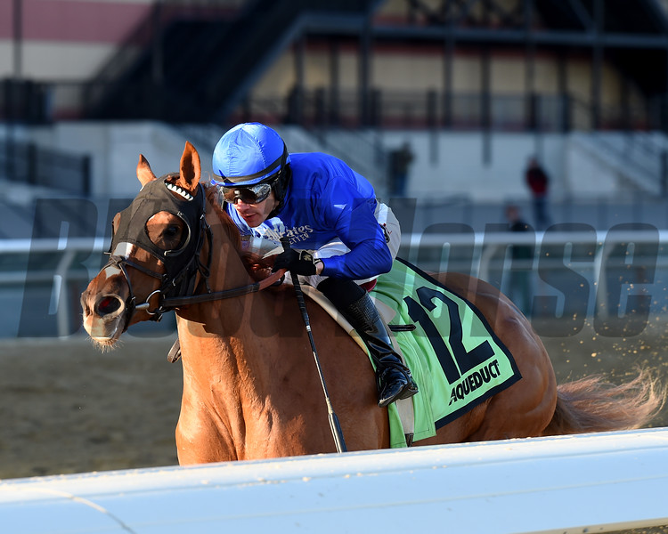 Lake Avenue wins the 2019 Demoiselle Stakes at Aqueduct<br /> Coglianese Photos/Chelsea Durand