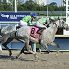 Yes I See wins the 2019 Claiming Crown Iron Horse at Gulfstream Park<br /> Coglianese Photos/Lauren King