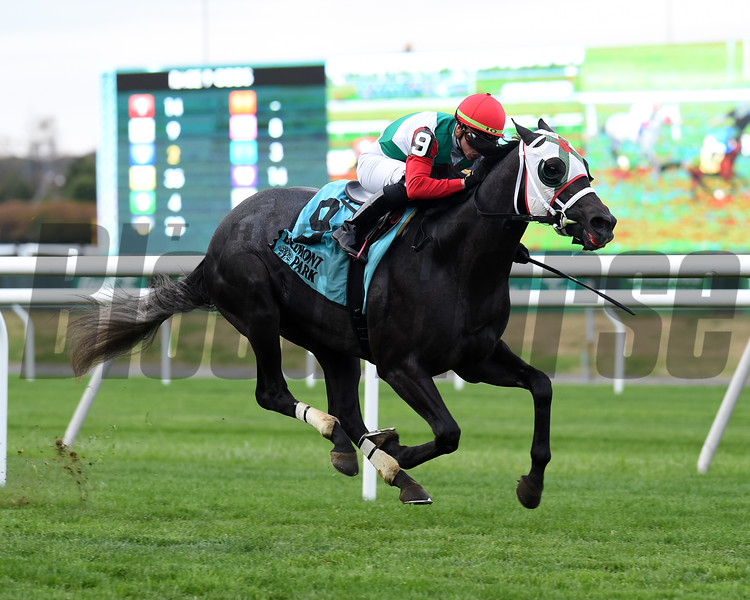 Buy Land and See wins the 2019 Awad Stakes at Belmont Park<br /> Coglianese Photos/Elsa Lorieul