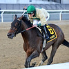 Golden Award wins the 2019 Turnback the Alarm Handicap at Aqueduct<br /> Coglianese Photos/Joe Labozzetta