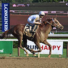 Americanrevolution wins the 2021 Albany Stakes at Saratoga<br /> Coglianese Photos/Janet Garaguso
