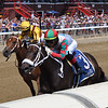 November Rein wins the 2021 Seeking the Ante Stakes at Saratoga<br /> Coglianese Photos/Chelsea Durand