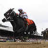 Yaupon wins the 2021 Forego Stakes at Saratoga<br /> Coglianese Photos