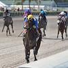 Outfoxed wins the FTBOA Florida Sire Susan's Girl Stakes at Gulfstream Park<br /> Coglianese Photos/Ryan Thompson