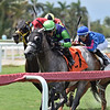 Harry's Ontheloose wins the 2021 North Miami Beach at Gulfstream Park<br /> Coglianese Photos/Ryan Thompson