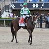 Octane wins the 2021 FTBOA Florida Sire Affirmed Stakes at Gulfstream Park<br /> Coglianese Photos/Ryan Thompson