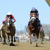 Drain the Clock wins the 2021 Bay Shore Stakes at Aqueduct<br /> Coglianese Photos