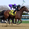 Paris Lights wins the 2021 Distaff Handicap at Aqueduct.<br /> Coglianese Photos/Janet Garaguso