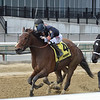 Paris Lights wins the 2021 Distaff Handicap at Aqueduct.<br /> Coglianese Photos/Chelsea Durand