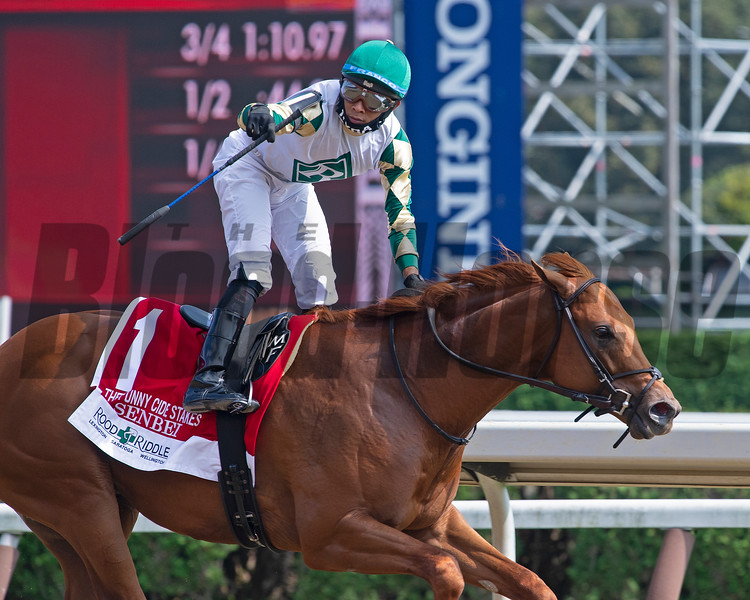 Senbei with Manny Franco wins the Funny Cide<br /> Scenes from New York Thoroughbred Breeders day during Travers week in Saratoga on Aug. 27, 2021.