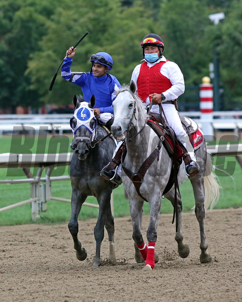 Essential Quality with Luis Saez win the 152nd Running of The Travers (GI) at Saratoga on August 28, 2021. Photo By: Chad B. Harmon