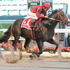 Flat Out Jockey Club Gold Cup<br /> Coglianese Photos