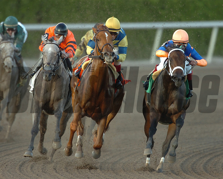 Gemswick Park at Gulfstream Park<br /> Photo by Coglianese Photos