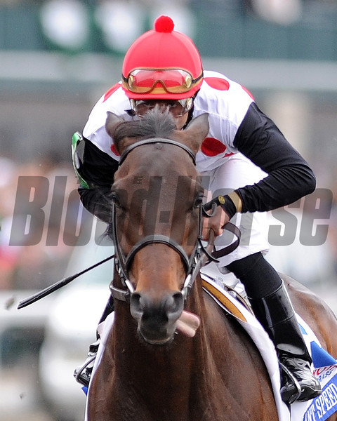 Brilliant Speed, Joel Rosaio up, wins the Bluegrass Stakes at Keeneland Race Track, Lexington, KY 4/16/11, photo by Mathea Kelley;