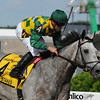 Paddy O'Prado, Kent Desormeaux up, wins the Dixie Stakes Pimlico Race Track, Baltimore, MD 5/20/11, photo by Mathea Kelley