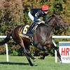 Boisterous wins the 2011 Red Smith.<br /> Coglianese Photos