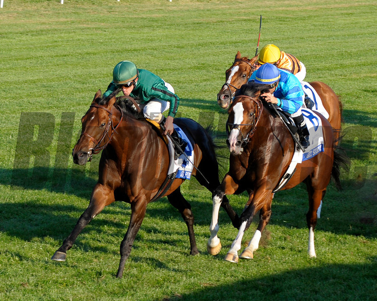 Caption: Gio Ponti with Ramon Dominguez wins the Shadwell Mile (gr. IT).<br /> Keeneland racing on Oct. 8, 2011, at Keeneland in Lexington, Ky.<br /> ShadwellMile1 image441<br /> Photo by Anne M. Eberhardt