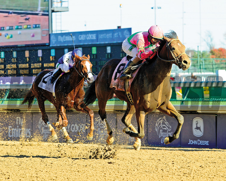 Caleb's Posse with Rajiv Maragh wins the Breeders' Cup Dirt Mile  at Churchill Downs in Louisville, Ky. on Nov. 5, 2011<br /> Photo by Anne M. Eberhardt